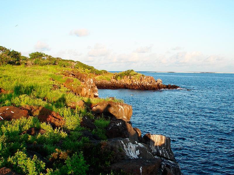 2-ilha-floreana-galapagos