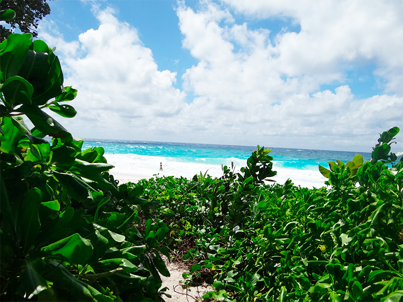 4-ilhas-seychelles-madagascar