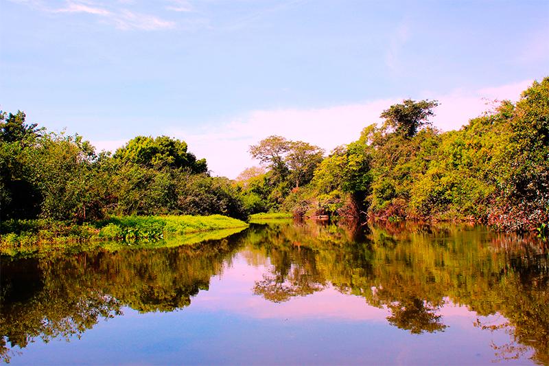 3-pantanal-mato-grosso-do-sul