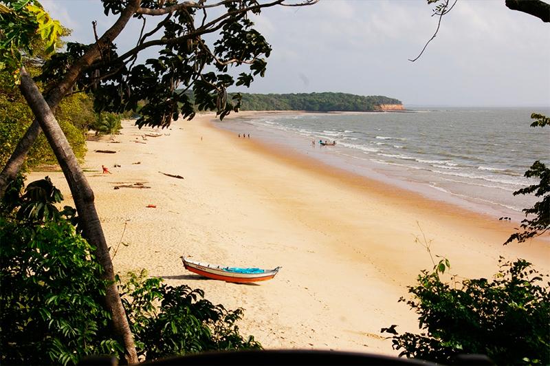 1-ilha-marajo-brasil-2