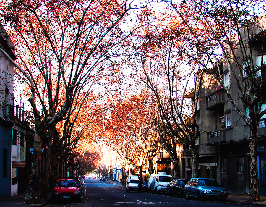 5-uruguai-rua