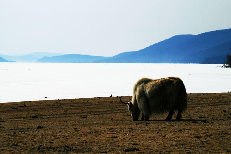 Lago de Khovsgol na Mongólia