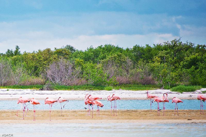 Praias em Cancun, no famoso Caribe Mexicano