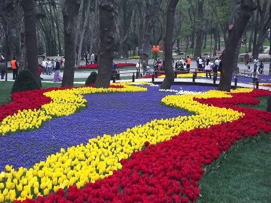 2-tulipas-istambul