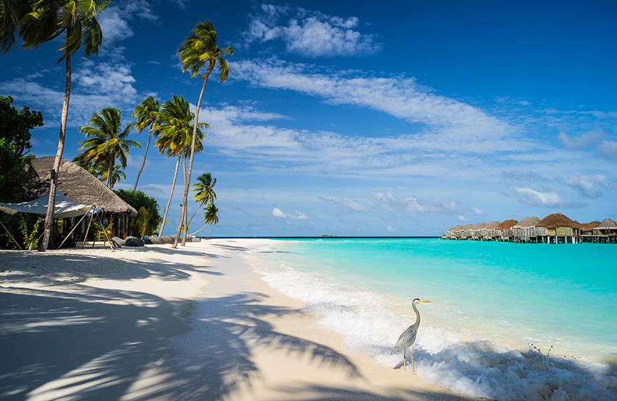 3-ilhas-maldivas-mar