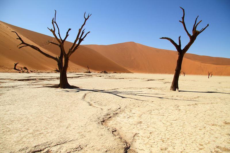 Deserto da Namíbia, um lugar encantador e surpreendente