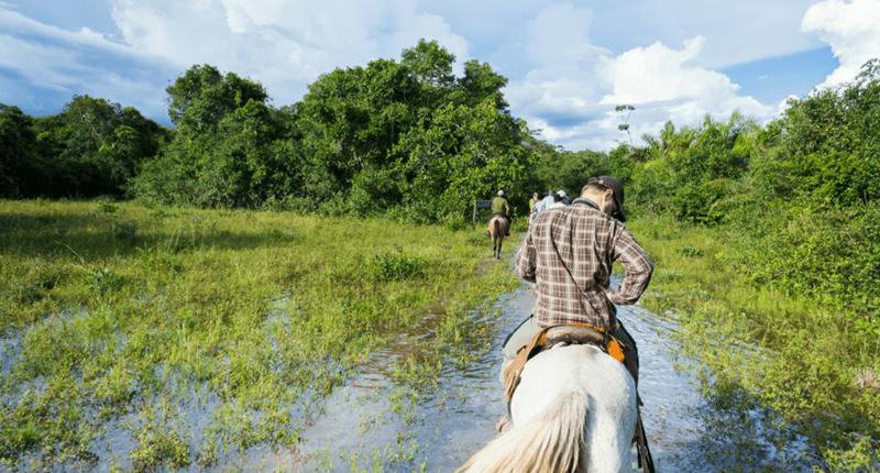 Melhores roteiros no Pantanal