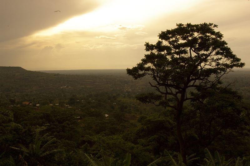 5 razões para conhecer a espetacular Uganda