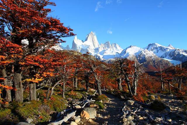 beautiful-nature-landscape-with-mt-fitz-roy-as-seen-in-los-glaciares-national-park-patagonia-argentina