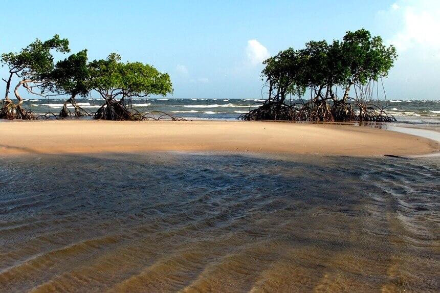 3-ilha-de-marajo