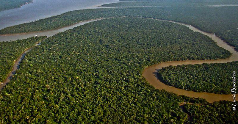 Rio Salmões na Amazônia, conhecendo as comidas típicas