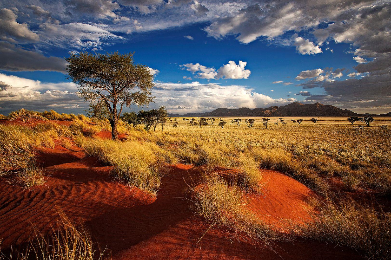shutterstock_201561224-namibia