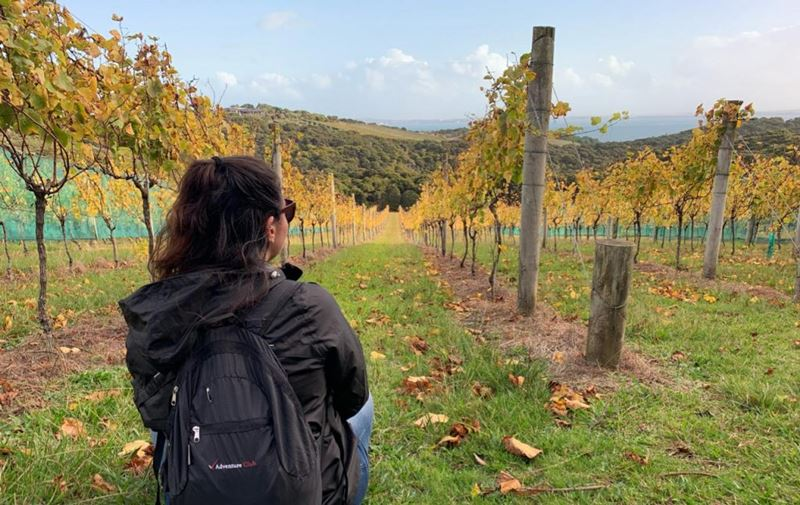 Nova Zelândia, as experiências por Amanda Gallo