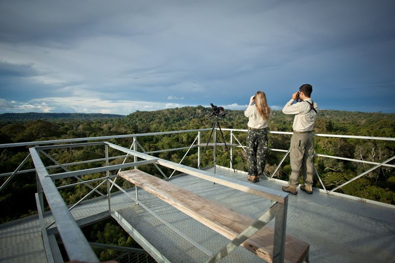 tourists-at-canopy-tower-ii-2
