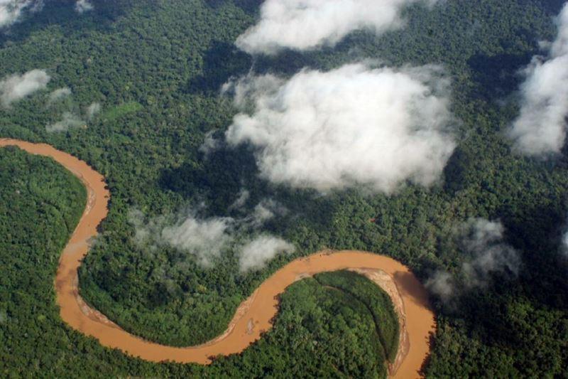 Amazônia, onde levar as crianças nas férias