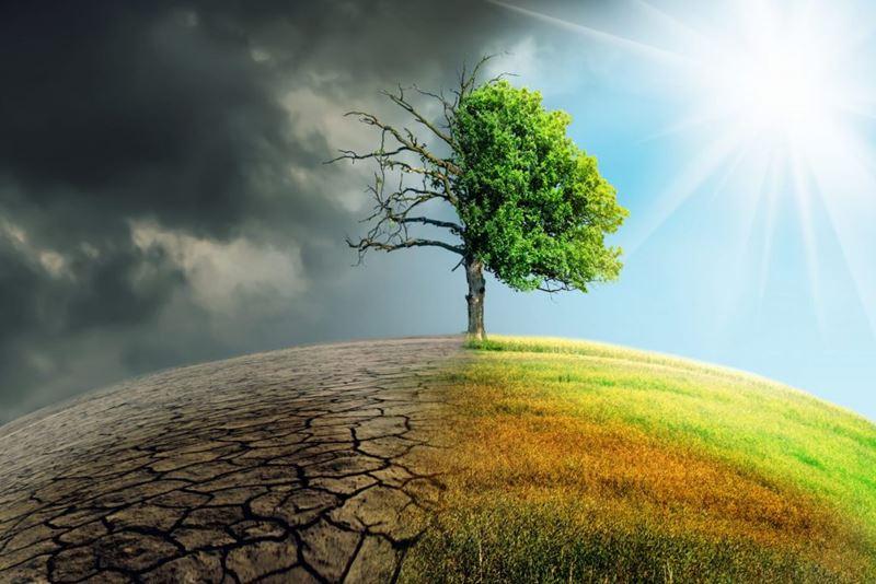 A recuperação do Planeta Terra