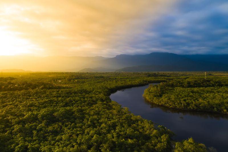 Floresta Amazônica, ajuda aos artesãos de Novo Airão