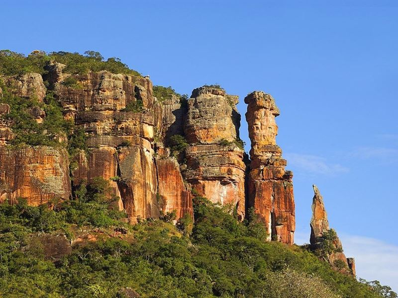 Mistérios e aventuras na Serra do Roncador