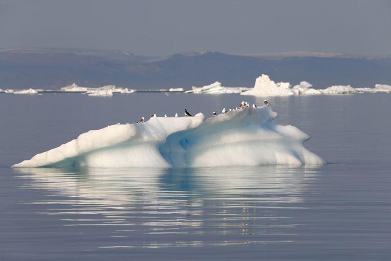 Aero-cruzeiro Antática, um dos roteiros com o Elemento da Natureza, Água