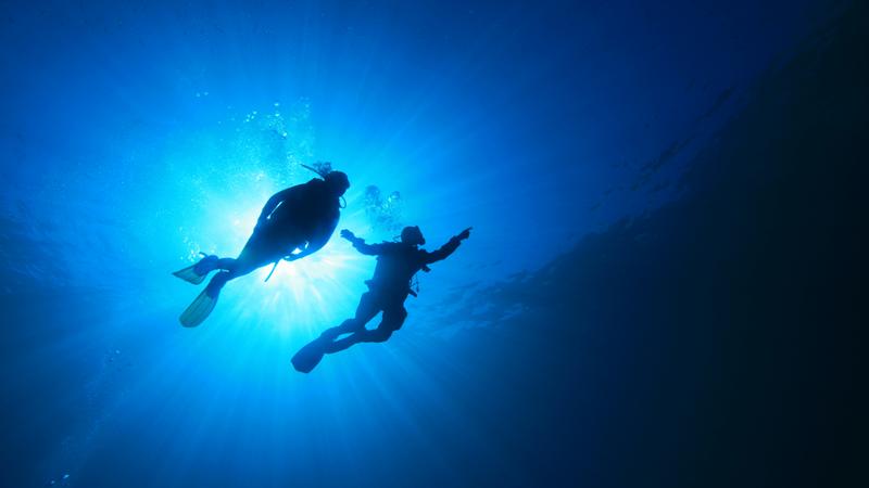 Ilha Grande, mergulho pelo fundo do mar