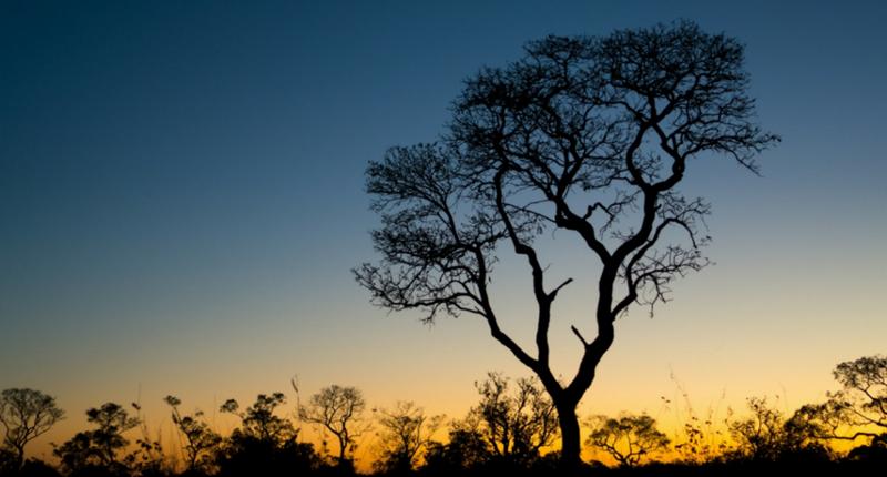 Fortim, um lugar lindo para ver o pôr do sol no Brasil
