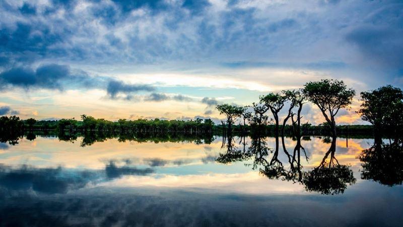 Reserva Mamirauá um dos lugares para fazer turismo sustentável no Brasil
